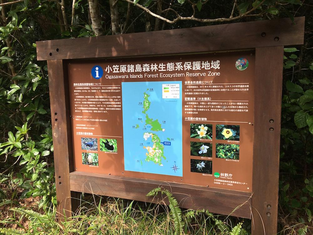 小笠原戦跡ツアーは保護区になっている