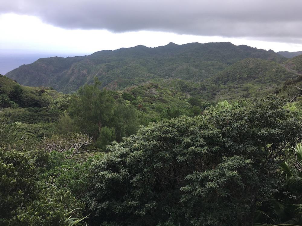 小笠原戦跡ツアーの風景