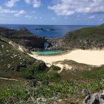 イルカと泳ぐ&ホエールウォッチング&南島上陸ツアーに参加